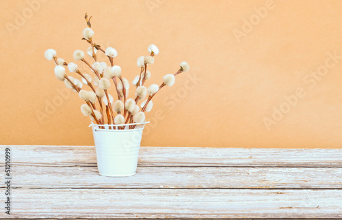 Rustic arrangement of pussy willows