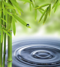 Spa encore la vie avec les milieux d'eau