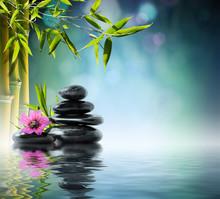 tour pierre noire et d'hibiscus avec le bambou sur l'eau
