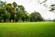 canvas print picture - green grass field in big city park