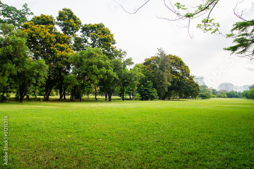 canvas print picture green grass field in big city park