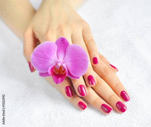 Fototapeten,nagel,hand,finger,sauber
