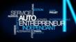 Постер, плакат: Auto entrepreneur ind