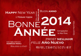 Bonne Année 2014 Nouvel An langues international illustration