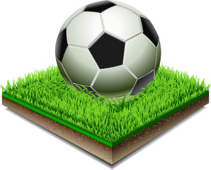 Soccer ball on the Grass Plate Isolated On White Background
