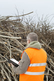 Worker checks branches before preparing wood chips