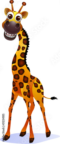 Illustration of a cute giraffe