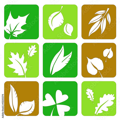 Summer leaves icons