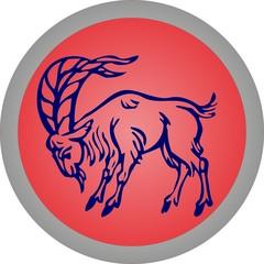 zodiac, goat