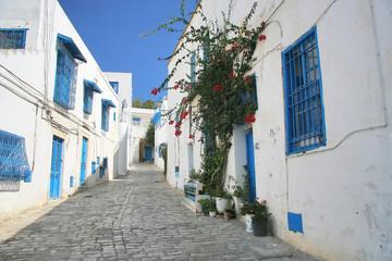 Street in Sidi Bou in Tunisia