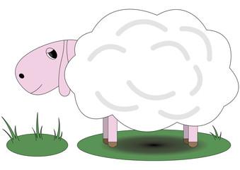 Pretty pink sheep standing on grass