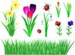 Frühling Blumen Set