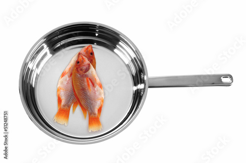 Fish in pan. Isolated