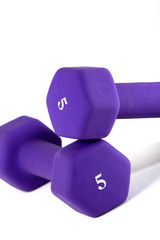 two 5 pound weights on a white background.