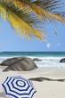 plage des Seychelles, sable blanc, rochers, cocotiers