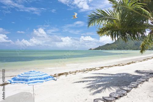 plage de Praslin aux Seychelles