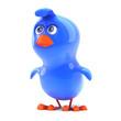 3d Bluebird looks up