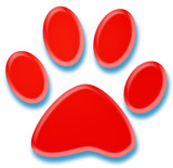 3d red pet paw illustration