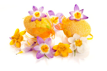 Easter eggs with  crocuses