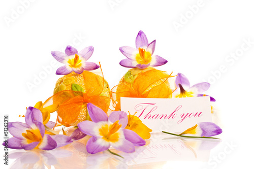 thanks and spring crocuses