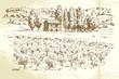landscape, vineyard - hand drawn illustration