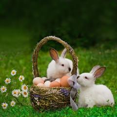 Пасха. Кролики с корзиной яиц