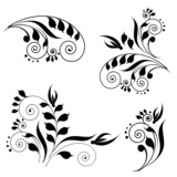 swirls design vector
