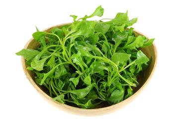 A Bowl of Fresh Watercress (Nasturtium officinale)