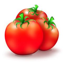 Reife rote Tomate, gesundes Gemüse