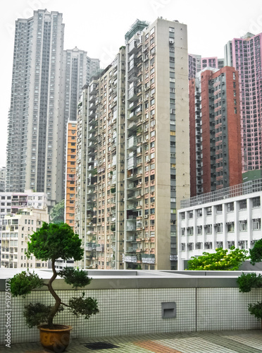 Skyscrapers in Hong Kong with bonsai