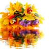 Herbststrauß, Reflektion