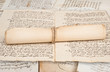Rolled manuscripts