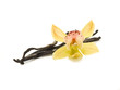 Vanilla beans with orchid flowers