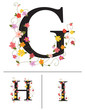 Decorative super caps letters G, H, I