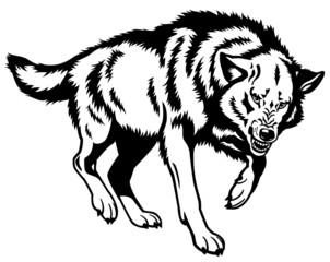 wolf black white