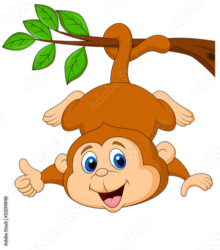 Cute monkey hanging on a tree branch with thumb up