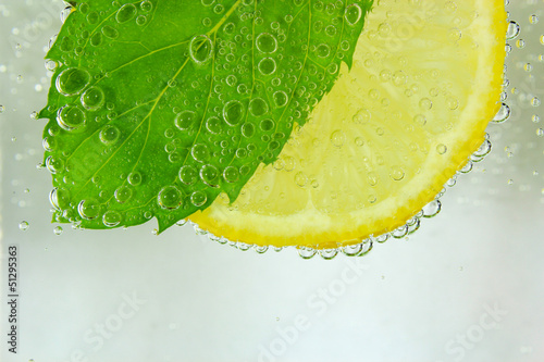 Lemon slice, mint leaf and water with bubbles