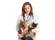 veterinarian holding a cat and a puppy