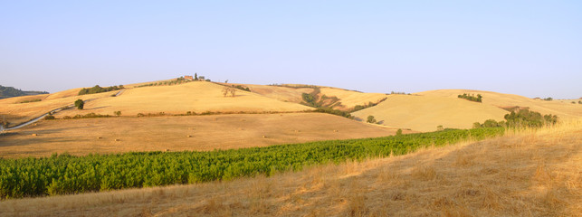 Landscape in Tuscany at dawn