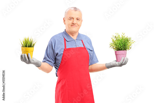 A mature male gardener with apron  holding two potted plants