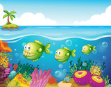 Three green piranhas under the sea
