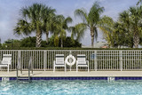 Swimming pool against palms in poster