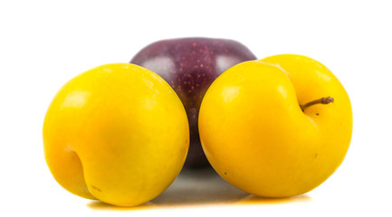 Mirabelle and damson plum with white background