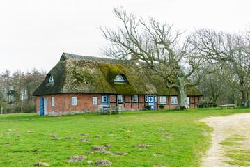 Reetgedecktes Haus an der Geltinger Birk