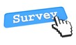 Survey Button.