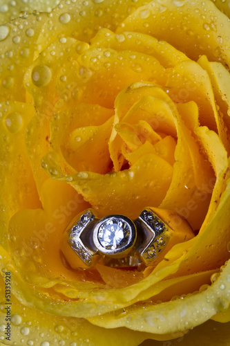 Yellow rose with ring
