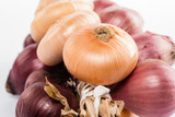 Cipolle - Onions, closeup