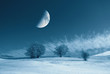 moon in the sky over snowy field