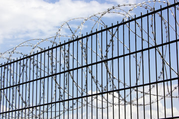 Barbed wire on metal fence