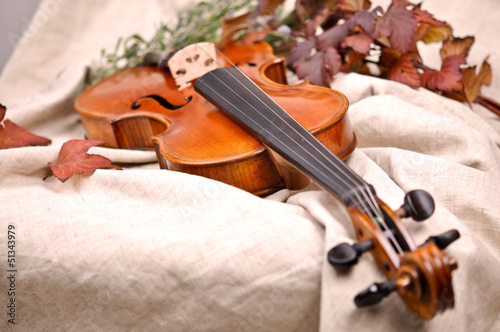 Close up of a violin and autumn leaves